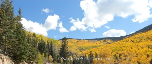 Aspen Vista - Sangre de Cristo Mountains