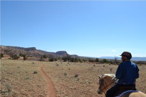 Trail-Orphan-Mesa