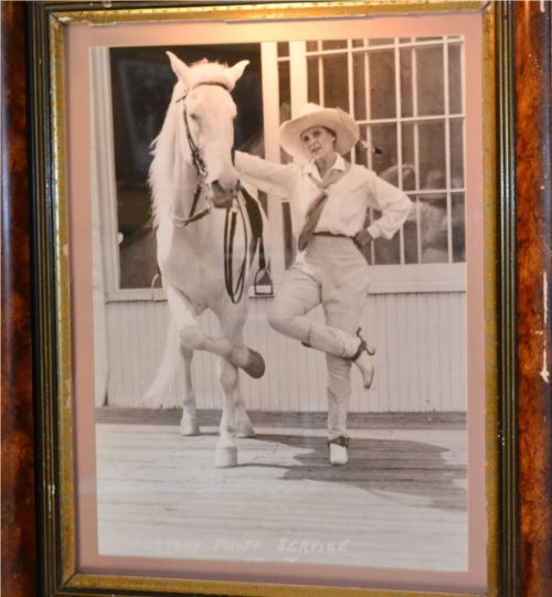 Horseandcowgirl