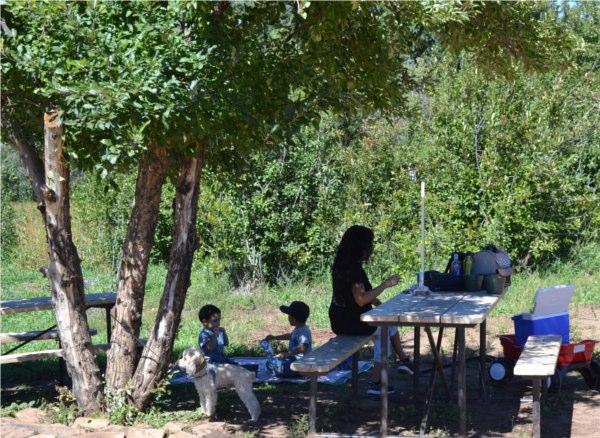 Shade picnic