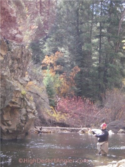 Autumn fishing in new mexico