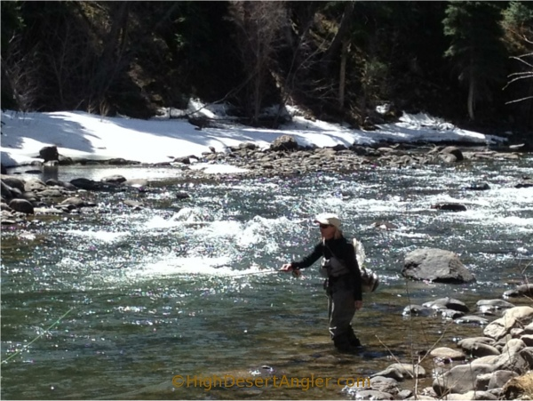 Fly fishing year round in northern new mexico santa fe for Fishing new mexico