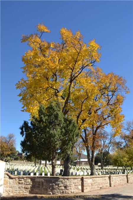 Rosario National Cemetery, Santa Fe.