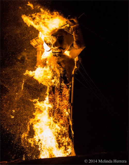 2014 Zozobra in full burn mode. Image by Melinda Herrera. Photo courtesy of Ray Sandoval.