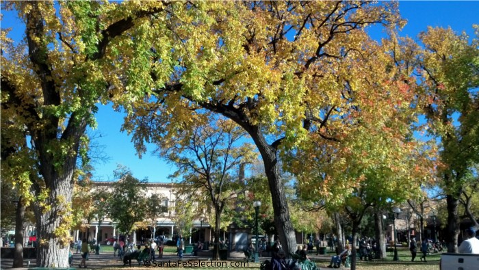 Santa Fe Plaza's Fall Colors.