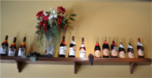 casa abril vineyards pic3