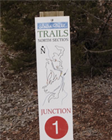 mountain bike trails logo